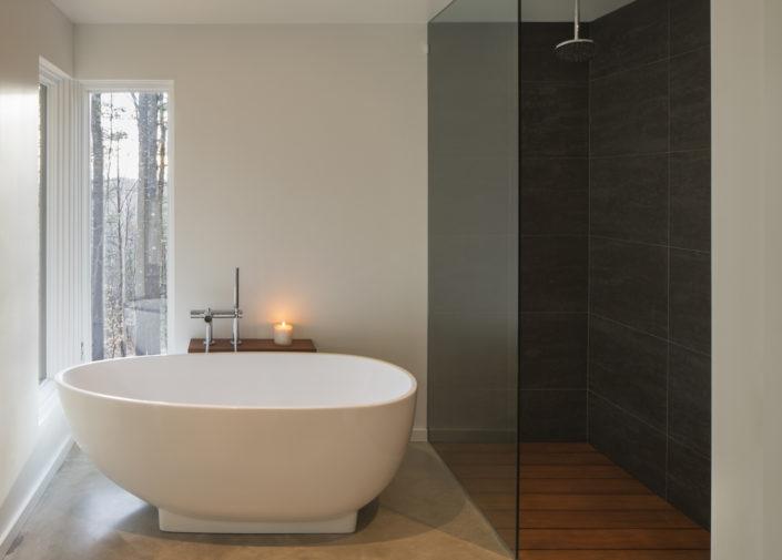 Modern Interiors - Lantern Ridge House, Kerhonkson, NY