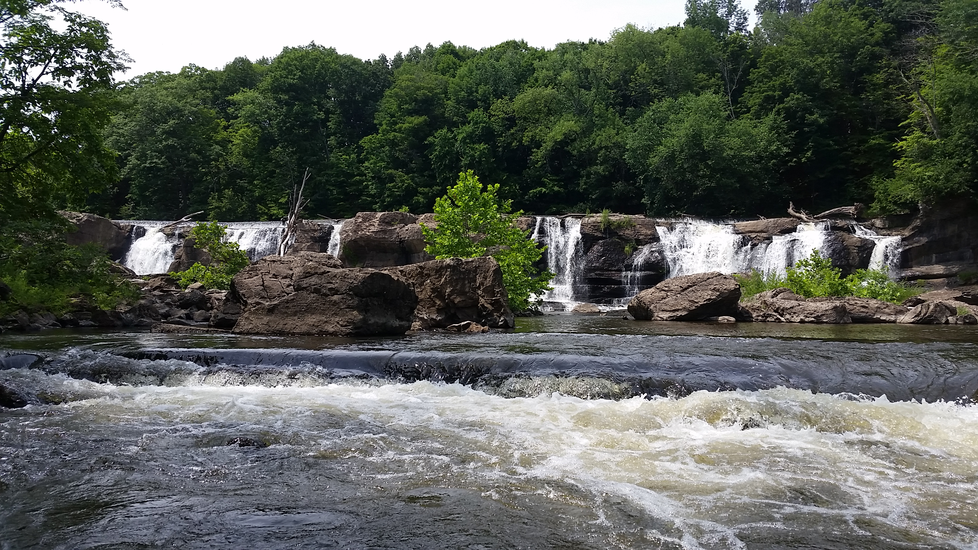 Local Adventures: Our Favorite Swimming Holes