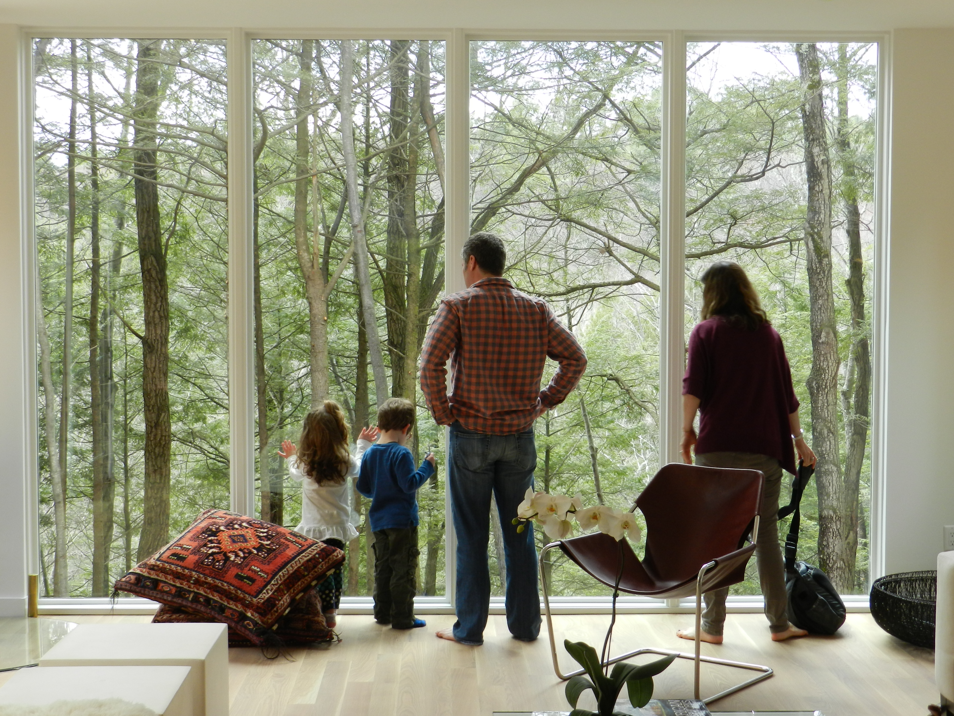 Expansive Windows - Creek House - Modern Design Hudson Valley