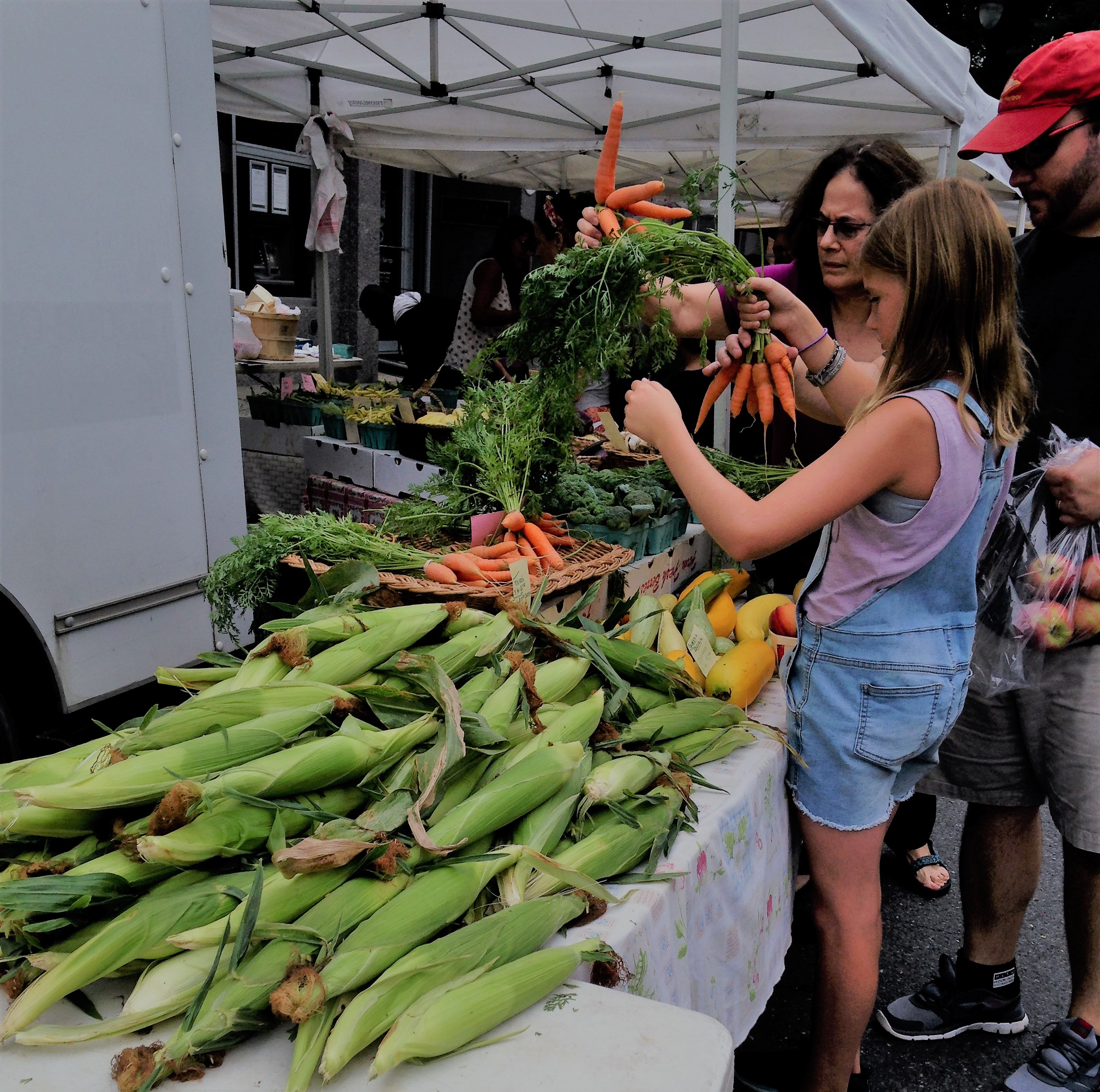 Summer Grilling - Farm to Table in the Hudson Valley
